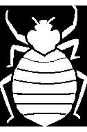 bed bug service icon