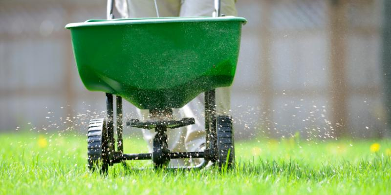 lawn technician fertilizing green grass